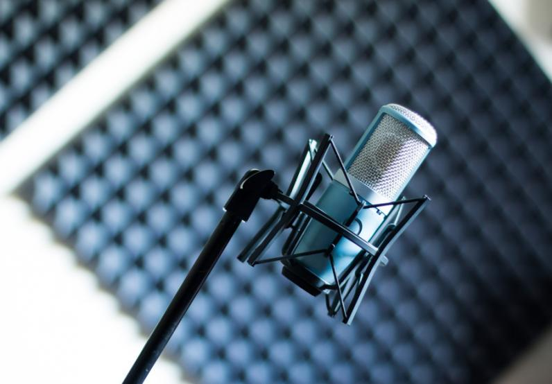 why you need professional voice over services for your business