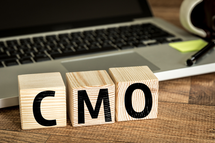 chief marketing officer services